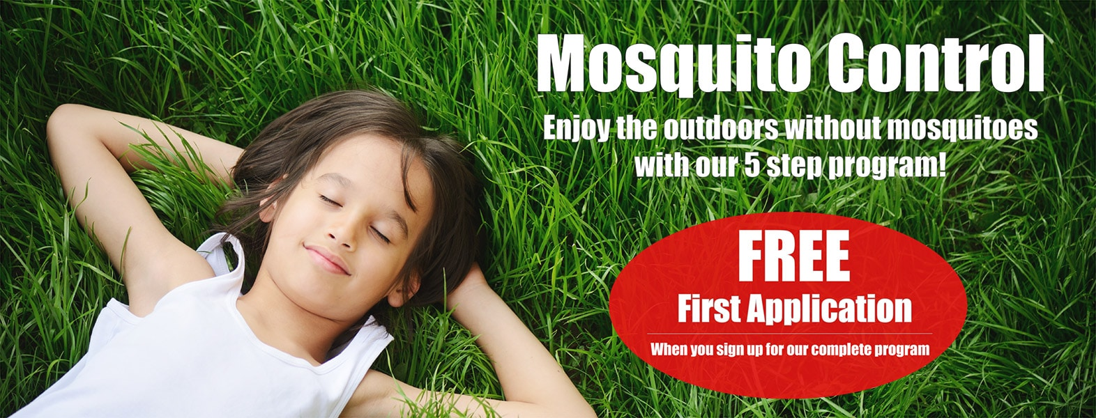 spring touch mosquito control