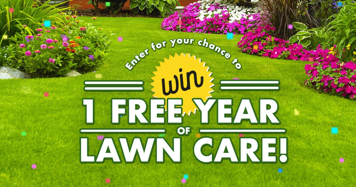Giveaway Spring Touch Lawn Amp Pest Control
